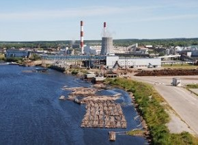 Several Russian pulpmills announced falling sales in Jan-Sep 2012
