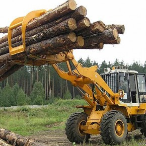 Estonian investors to build a sawmill in Kirov region