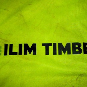 Ilim Timber sales in 2012 reached $710 million, lumber production was 2.28M cu m