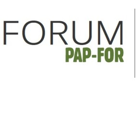 25 ideas of PAP-FOR 2013 forum