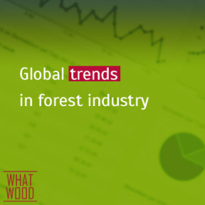 Global timber market review #10-2015