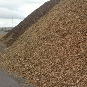 Temporary waste wood storage opened in Komi