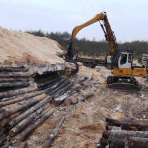 Investlesprom prepared for axle load limit, intends to decrease log purchase prices in NW Russia