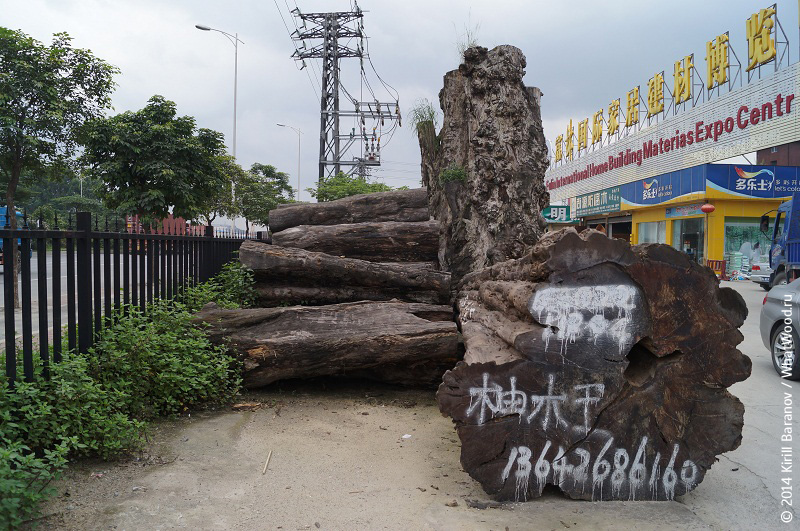 Fulin timber market in Guangzhou (China), photo: WhatWood.ru
