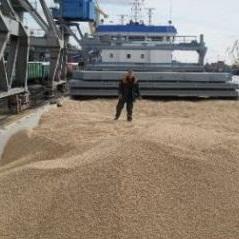 Asia-Les to build a pellet line in Khabarovsk region