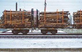 China withdraws benefits for railway transportation of timber cargoes