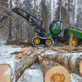 In Krasnoyarsk region it started the winter season of wood harvesting
