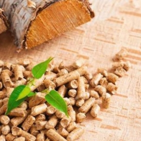 Researchers have proposed a new technology to produce biofuel from wood waste