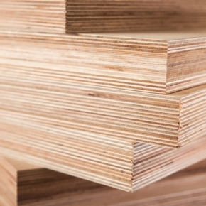 Segezha Group invests more than 8 billion rubles in the construction of a new plywood mill at the Galich TOR