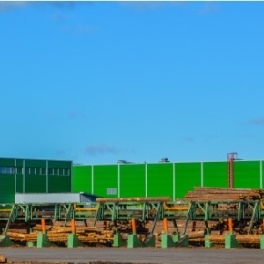In January 2019, Pestovsky LPK broke all records: the volume of sawn timber production exceeded 30 thousand cubic meters