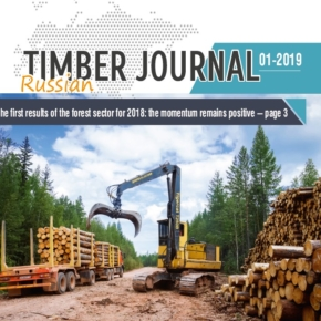 "Russian Timber Journal №01-2019: the eight-year work of the existing head of Rosleskhoz was assessed as unsatisfactory; WhatWood summarizes the preliminary results of the LPK for 2018; the company ""Solikamskbumprom"" took a loan of 27 million euros; Segezha Group completed the design of a new pulp and paper mill in the Krasnoyarsk region; prices and volumes of production of LPK in Russia for 4Q 2017-2018"