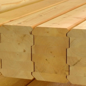 "In the Novgorod region, the company ""Hasslacherles"" plans to invest 1.5 billion rubles in the creation of a new production of laminated veneer lumber and wooden construction elements"