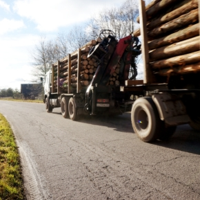 In 2019, a large logging company in the North-West of Russia will increase the volume of construction of forest roads by 20 %