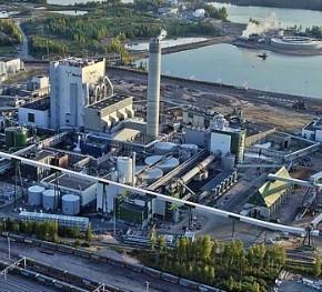 A large biotechnological complex is being designed in the Krasnoyarsk region