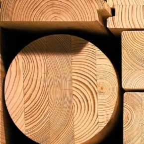 In January 2019, the share of export of Russian timber and pulp and paper products amounted to 3.1 %