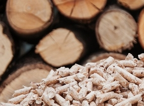 In 2023 ULK group will open advanced sawmill production