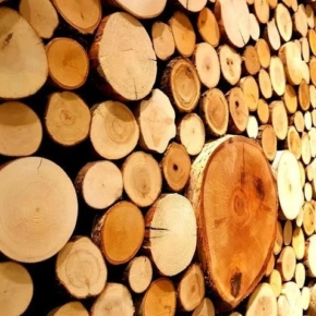 "WhatWood:""The downward trend of the export of unprocessed round timber from Russia is saved"""