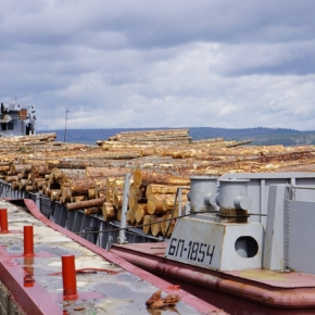 During the navigation period, the first batches of roundwood were delivered to the Lesosibirsk LDK №1