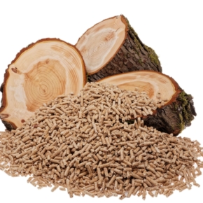 "WhatWood: ""In Russia, the period of construction of autonomous production of wood pellets ends"""