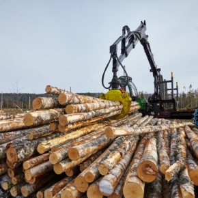 Sudima together with KGK plan to launch a project to create a timber processing complex in Primorye and Transbaikalia