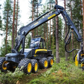 New strategy: until 2028, Sveza will invest more than 1.5 billion rubles in its own logging