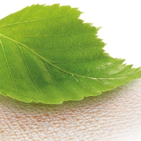 UPM has created a new product based on wood nanocellulose for the medical industry