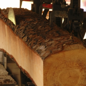 TechnoModel LLC realizes in the Tyumen region the large-scale investment project on processing about 300 thousand cubic meters of wood annually