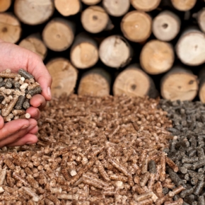 The plant for the production of wood waste products will appear in Karelia
