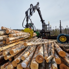 Russian Forest Industry during the pandemic