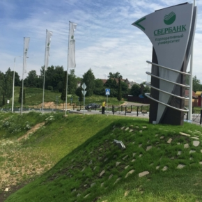 WhatWood Agency took part in a webinar for forest sector industry at Sberbank Corporate University