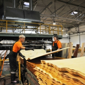 Russia has been increasing plywood exports at the fastest pace since 2016