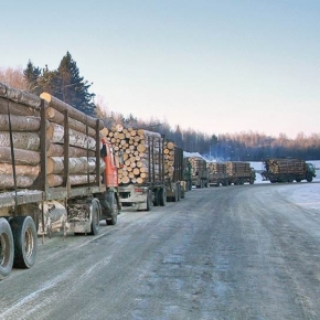 Logs exports from Russia to Finland is declining a moderate pace