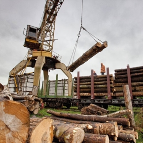 Investment projects of Les-Export and Sibirles being Implemented in the Tomsk region are included in the list of priority ones in the forest sector