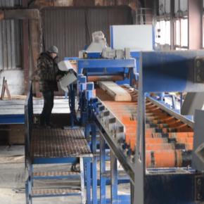 Selena LPK (Bashkortostan) bought a sawmill from Kador LLC (Poland)