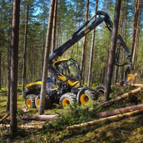 In May 2020 Finland reduced timber harvesting by 14%