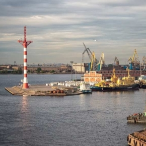 Sea Port of St. Petersburg has increased the transshipment of wood pellets by 45% in 1H 2020
