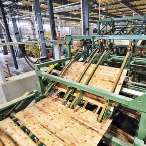 Japan significantly reduced imports of Russian veneer logs