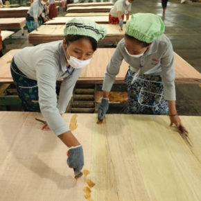 There has been a steady decline in the volume of Japan's plywood imports in 1H 2020