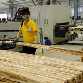 Stunning Vietnamese wood product exports in 1H 2020