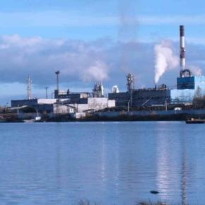 Cherepovets Plywood and Furniture Mill and Vologodskiye Lesopromyshlenniki Group purchased Sheksna Wood Board Plant