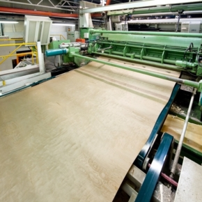 A plant for value-added veneer logs processing is supposed to be built in the Sverdlovsk Region (Russia)