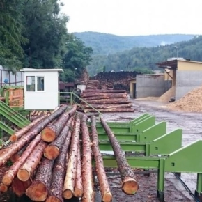 Sweden: roundwood prices continue to decrease