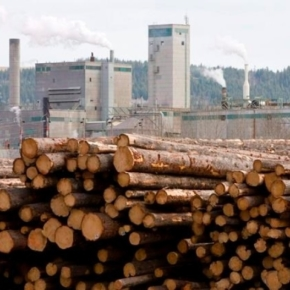 West Fraser Timber to acquire Norbord in all-stock deal valued at $3.1 billion