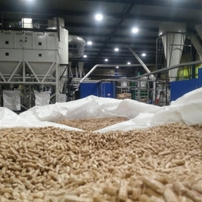 The output of wood pellets in Russia grew by 6.7% in January-October 2020