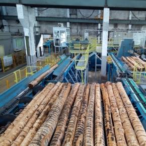 Sveza may open a production venue processing pulplogs in the Leningrad Region