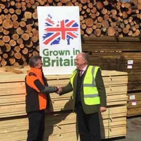 EUTR to become UK domestic legislation starting January 1, 2021