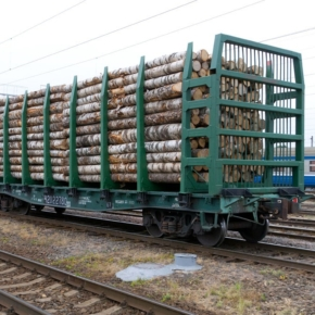 TransLes and Sveza Group started implementing a project ensuring raw material deliveries to plywood mills.