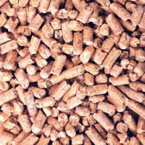 Uranium One enters Italian biofuel market