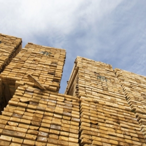 Sharp rise in Canadian sawn timber production