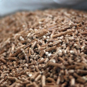 Pik-Bio (Irkutsk Region, Russia) launched the second stage of the wood pellets production plant